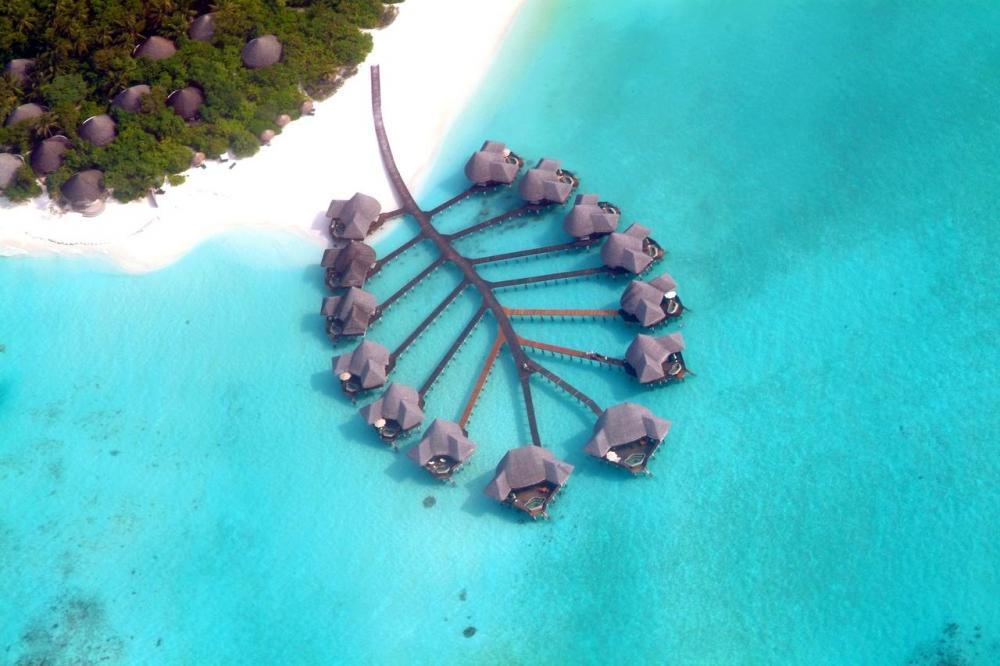 Hotel with private pool - Coco Palm Dhuni Kolhu